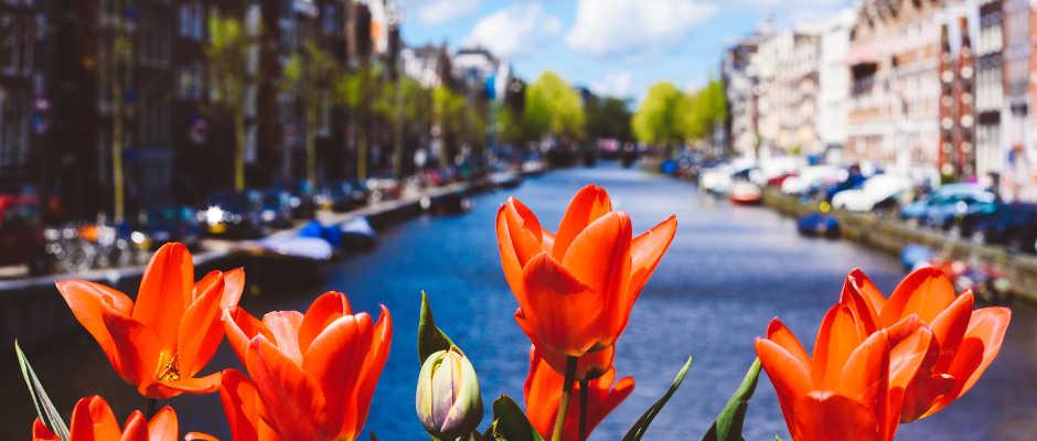 Odwiedź Amsterdam